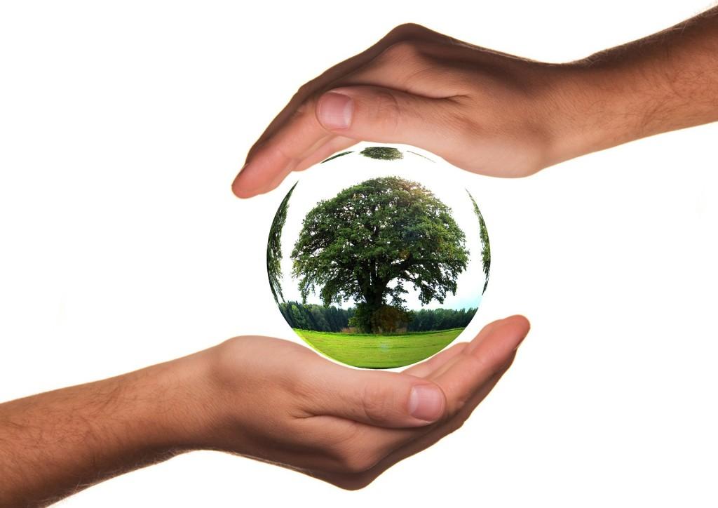 Exkursion Berufsorientierung Umweltberufe