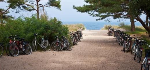 Fahrradwandertag, Fahrradexkursion