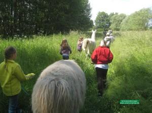 Schulwanderungen_ Wandertage_ Unstrut-Lamas (5)